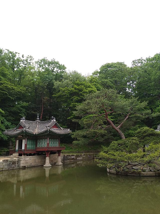 Korea-2018-Seul-Myeongdong-Hongdae-Dongdaemun-Palace-42
