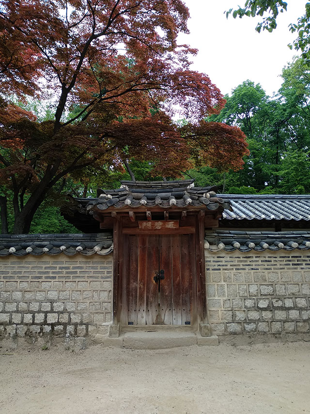 Korea-2018-Seul-Myeongdong-Hongdae-Dongdaemun-Palace-46