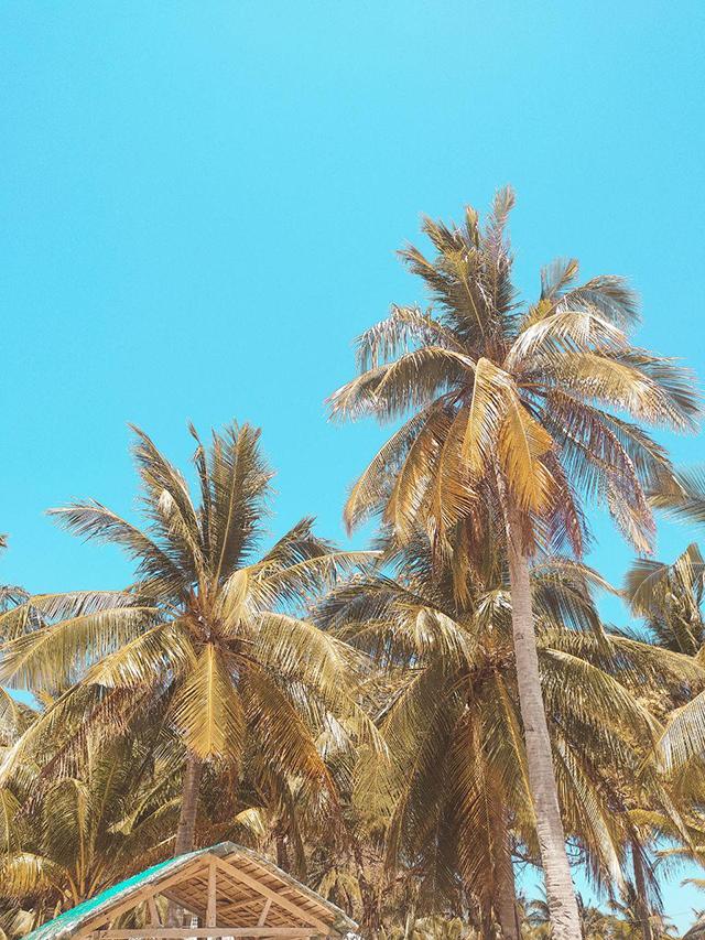2019-Coron-Palawan-Micki-Josue-Beach-Philippines-Travel-Blog-48
